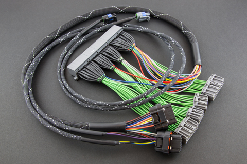 haltech_310 boomslang haltech elite 550 750 1000 2000 1500 2500 wire harnesses elite 1500 wiring diagram at n-0.co
